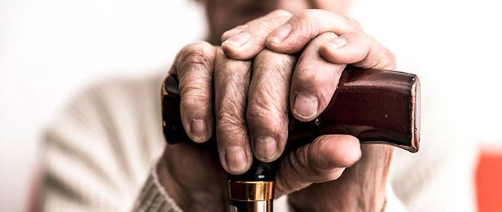 Zusammenhand Darmbakterien Parkinson